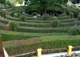 Botanical Garden - Labyrinth