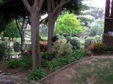 Botanical Garden - General View