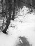 Narrow River In Winter
