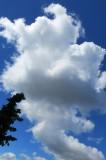 Clouds in June