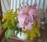 Lilies etc