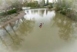 DSC_2614_canoe_falls.jpg