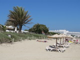 Gecko Beach, Migjorn
