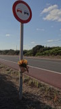 Lonely Tribute at Km 10.5
