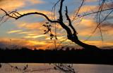Sunset on Fresh Pond