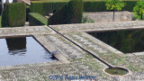 Garden Pools with Dove