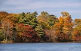 Connetquot River Autumn