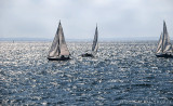 Sailing in the harbor
