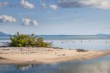 Caribbean Sandbar