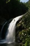Fun in the Elk River [gallery]