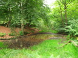 The  Antonine  Wall  and  ditch.