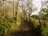Greensand  Way  approaching  River  Hill