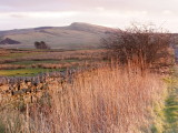 Winshield  Crags ,345m.high ,viewed  from  Haltwhistle  Common.