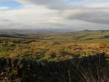 Looking  SW  across  Vindolanda  Roman  Fort.