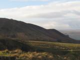 The  Long  Stone ,275m., on Barcombe  Ridge