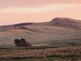 Walltown  Crags  just  after  dawn