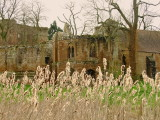 A  chapel , remains  of , fronted  by  bullrushes.