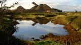 Sandhills  reflected.