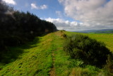 Offa's  Dyke  and  ditch  on  Hawthorn  Hill. Wales being on the right of the mound.