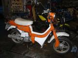 Suzuki  FZ50, 4/1984 - 7/1984