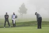 Tiger Woods 8751