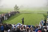 Tiger Woods 8733