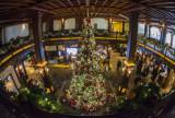 Hotel Del Coronado 6352