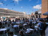 San Marco - Birds