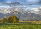 Photo Paintings