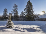 Winter in General