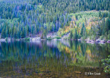 Mountain Colors_RMNP-0886.jpg