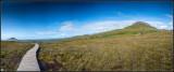 Irlanda 0425-panorama-w.jpg