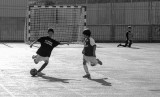 Futbol 8 -nov