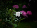 A Candle In The Garden