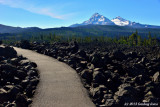 Path through the lava beds
