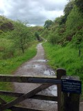 Towards the Treacle Mines