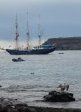 13-05 Galapagos 01.jpg