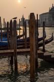 13-09 Venice-26.jpg