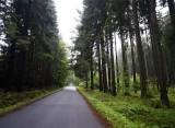 the next morning we drive toward Kuklík...
