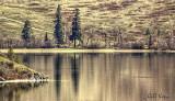 Okanagan reflections.jpg