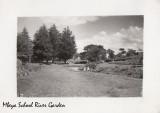 Mbeya River Garden.jpg