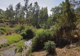 Mbeya School River Garden.jpg