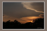 Francois Evening3.jpg