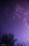 Francois Stars3.jpg