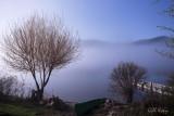 Morning Mist.jpg