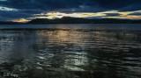 Evening ripples.jpg