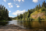 Stellako River3.jpg