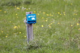 M40, Resenbro, Silkeborg, CR6F2680 24-05-2010.jpg
