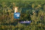 ACCU A20, Kirkeby, Gredstedbro,  0V4E0428 03-06-2011.jpg