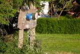 Bygholm vejler, 0V4E1176 12-06-2011.jpg